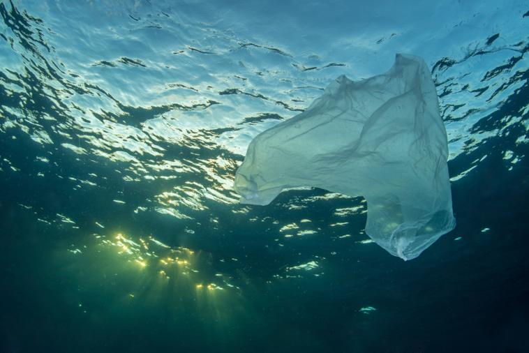 The Ocean Cleanup savoure ses premiers succès