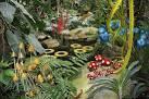 Design végétal : au service de l'homme et de la nature