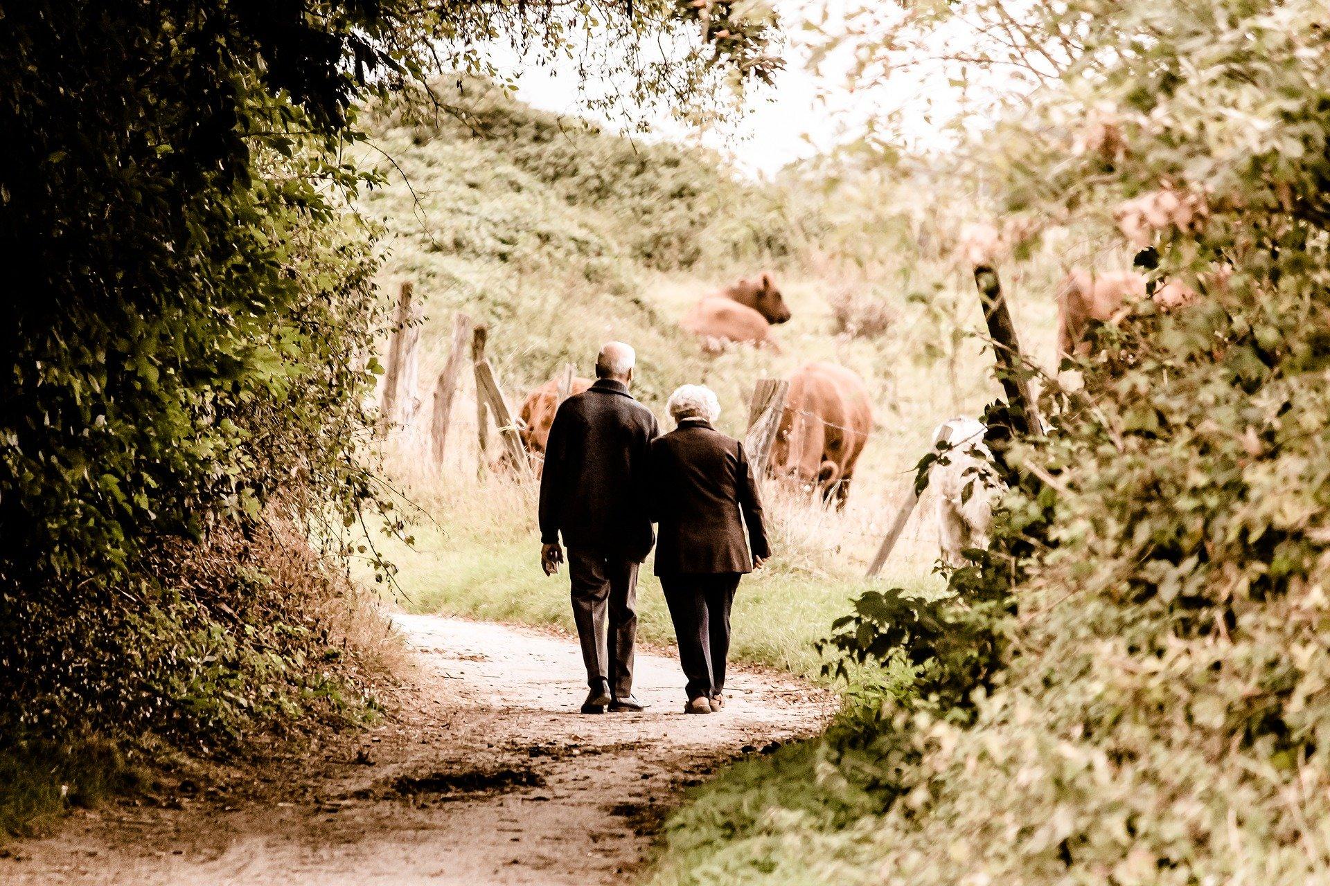 La revalorisation des pensions de retraite prendra effet le 1er janvier 2021