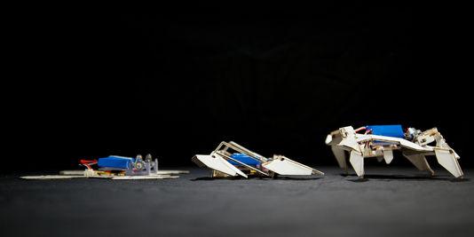Des robots-origami autonomes