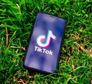 Rachat de TikTok : Twitter entre dans la danse