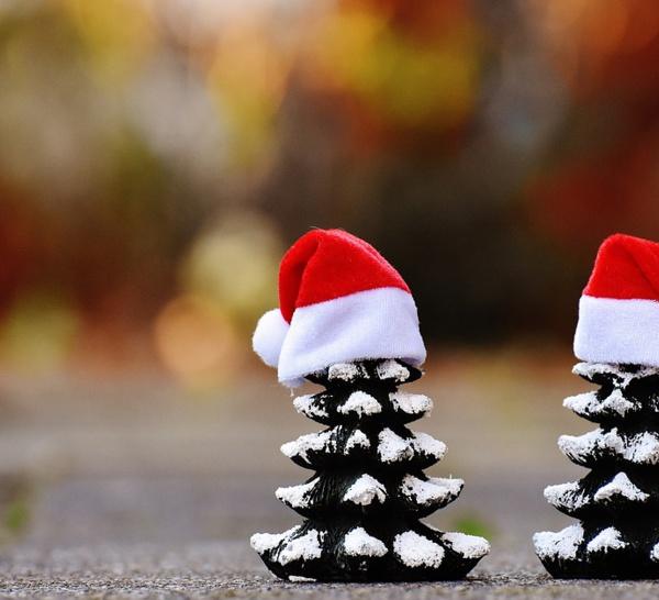 2,5 millions de Français vont toucher une prime de Noël en 2016