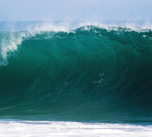 Greenpeace appelle plus que jamais à protéger les océans