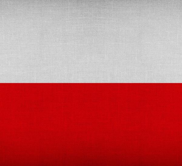 Pologne : le conservateur Andrzej Duda en passe d'être réélu