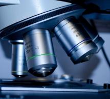 """L'Agence de biomédecine veut """"booster"""" le don d'ovocytes"""