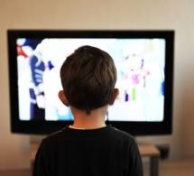 Hanouna, Ruquier, Foucauld, Canal : le pire de la télé selon les Gérard 2018