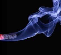Cigarettes : des chercheurs découvrent qu'on peut lutter contre l'addiction avec la lumière