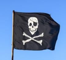 Le piratage coute 192 million de dollars par mois à Netflix