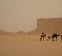 Paris : une exposition sur une région méconnue du nord-ouest de l'Arabie saoudite