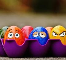 La couleur des coquilles d'œufs dépendrait de la température ambiante