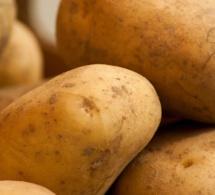 Un Français trolle le CES 2020 avec une patate connectée