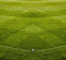 Covid-19 : la Ligue 1 veut 50 000 tests pour reprendre la compétition