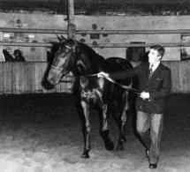 Pierre Durand et Jappeloup : la gloire sportive vue par le cinéma