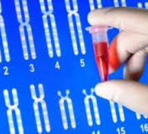 Sciences : Google et la génétique